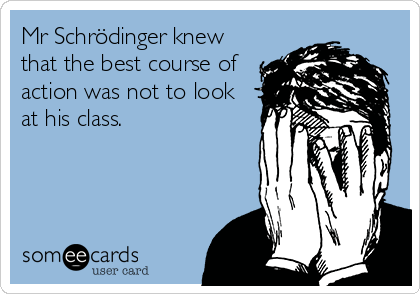 Mr Schrödinger knew that the best course of action was not to look at his class.