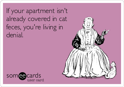 If your apartment isn't already covered in cat feces, you're living in denial.