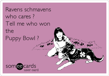 Ravens schmavens who cares ? Tell me who won the  Puppy Bowl ?