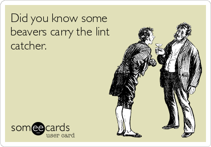 Did you know some beavers carry the lint catcher.