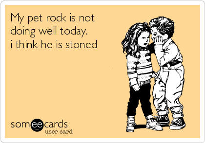 My pet rock is not doing well today. i think he is stoned