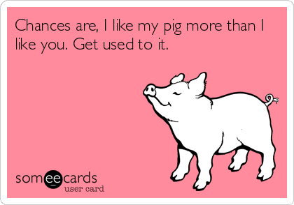 Chances are, I like my pig more than I like you. Get used to it.