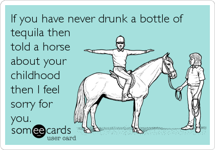 If you have never drunk a bottle of tequila then told a horse about your childhood then I feel sorry for you.