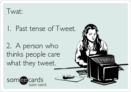 Twat:  1.  Past tense of Tweet.  2.  A person who thinks people care what they tweet.