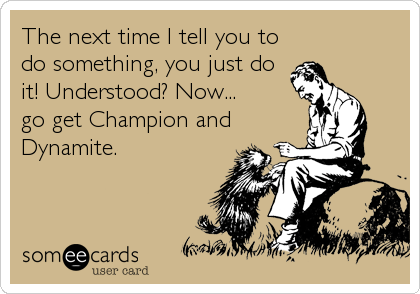 The next time I tell you to do something, you just do it! Understood? Now... go get Champion and Dynamite.