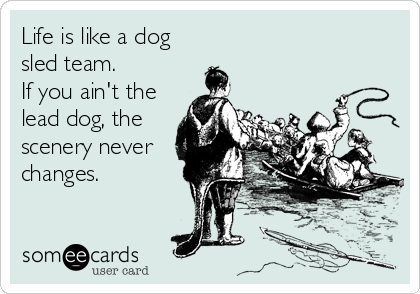Life is like a dog sled team.   If you ain't the lead dog, the scenery never changes.