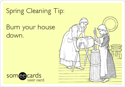 Spring Cleaning Quotes Captivating Spring Cleaning Tip Burn Your House Down News Ecard