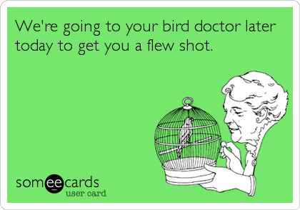 We're going to your bird doctor later today to get you a flew shot.