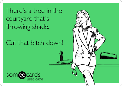There's a tree in the  courtyard that's  throwing shade.   Cut that bitch down!