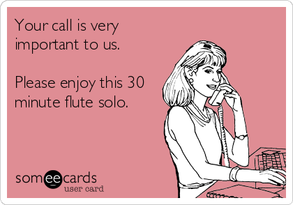 Your call is very important to us.   Please enjoy this 30 minute flute solo.