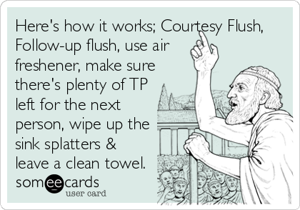 Here's how it works; Courtesy Flush, Follow-up flush, use air freshener, make sure there's plenty of TP left for the next person, wipe up the sink splatters & leave a clean towel.