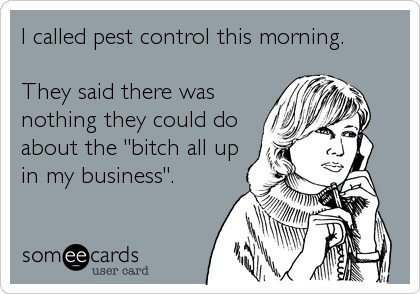 """I called pest control this morning.  They said there was nothing they could do about the """"bitch all up in my business""""."""