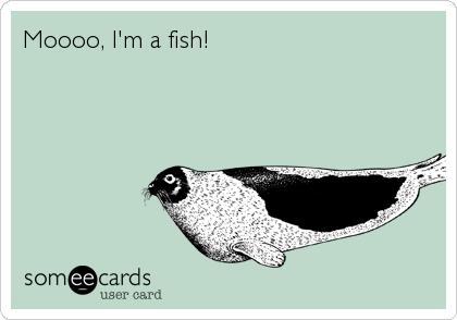 Moooo, I'm a fish!