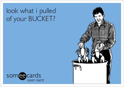 look what i pulled  of your BUCKET?