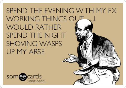 SPEND THE EVENING WITH MY EX WORKING THINGS OUT........I WOULD RATHER SPEND THE NIGHT SHOVING WASPS UP MY ARSE