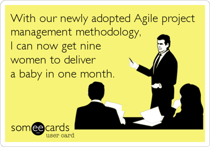 With our newly adopted Agile project management methodology, I can now get nine women to deliver a baby in one month.
