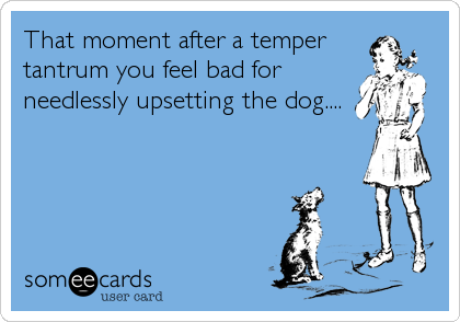 That moment after a temper tantrum you feel bad for needlessly upsetting the dog....