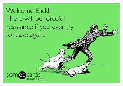Welcome Back!  There will be forceful resistance if you ever try to leave again.