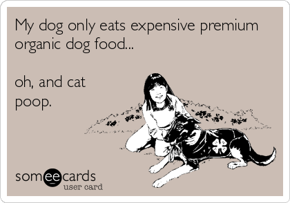My dog only eats expensive premium organic dog food...  oh, and cat poop.