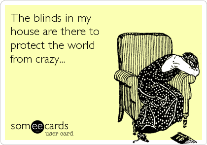 The blinds in my house are there to protect the world from crazy...