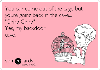 "You can come out of the cage but youre going back in the cave... ""Chirp Chirp"" Yes, my backdoor cave."