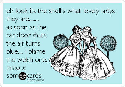 oh look its the shell's what lovely ladys they are........ as soon as the car door shuts the air turns blue.... i blame the welsh one.. lmao x