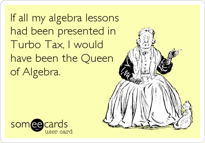 If all my algebra lessons had been presented in Turbo Tax, I would have been the Queen of Algebra.