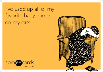 I've used up all of my favorite baby names on my cats.