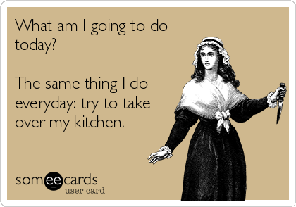 What am I going to do today?  The same thing I do everyday: try to take over my kitchen.