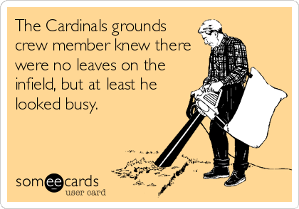 The Cardinals grounds crew member knew there were no leaves on the infield, but at least he looked busy.