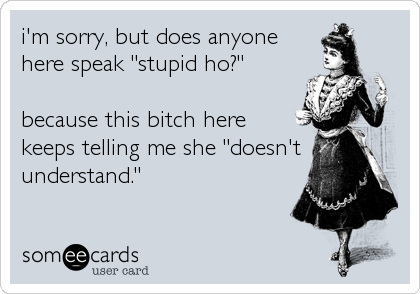 """i'm sorry, but does anyone here speak """"stupid ho?""""  because this bitch here keeps telling me she """"doesn't understand."""""""