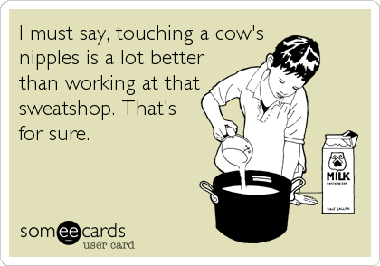 I must say, touching a cow's nipples is a lot better than working at that sweatshop. That's  for sure.