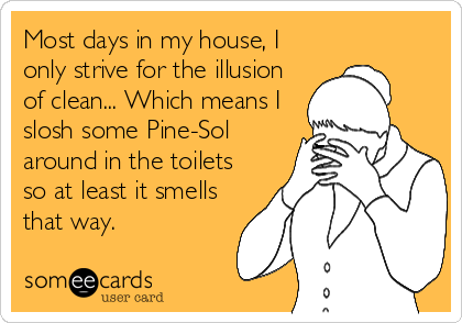 Most days in my house, I only strive for the illusion of clean... Which means I slosh some Pine-Sol around in the toilets so at least it smells that way.