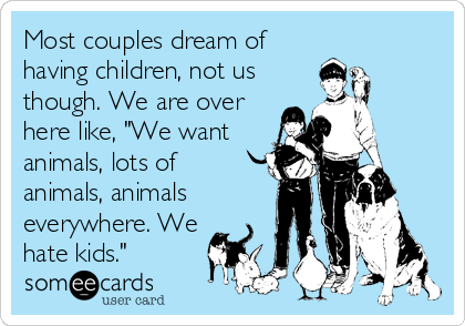 "Most couples dream of having children, not us though. We are over here like, ""We want animals, lots of animals, animals everywhere. We hate kids."""