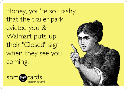 "Honey, you're so trashy that the trailer park evicted you & Walmart puts up their ""Closed"" sign when they see you coming."