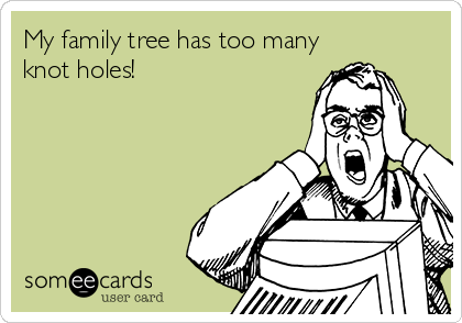 My family tree has too many knot holes!