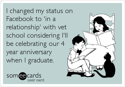 I changed my status on Facebook to 'in a relationship' with vet school considering I'll be celebrating our 4 year anniversary when I graduate.