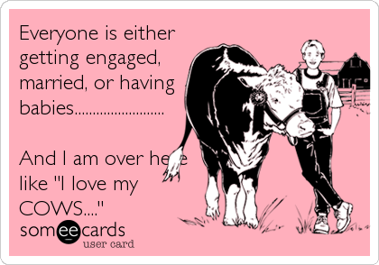 "Everyone is either getting engaged, married, or having babies.........................  And I am over here like ""I love my COWS...."""
