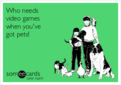 Who needs video games when you've got pets!