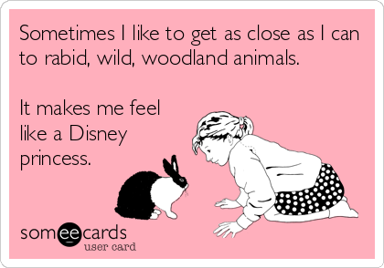 Sometimes I like to get as close as I can to rabid, wild, woodland animals.    It makes me feel like a Disney princess.