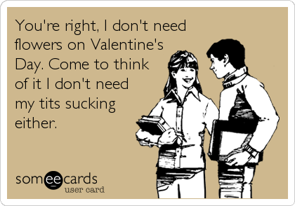 You're right, I don't need flowers on Valentine's Day. Come to think of it I don't need my tits sucking either.