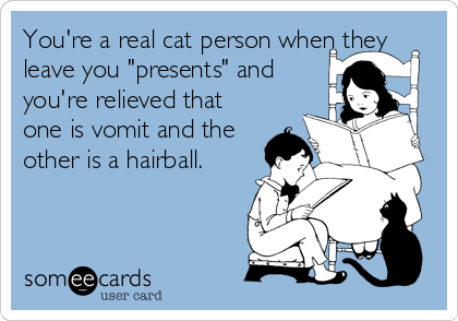 """You're a real cat person when they leave you """"presents"""" and you're relieved that one is vomit and the other is a hairball."""
