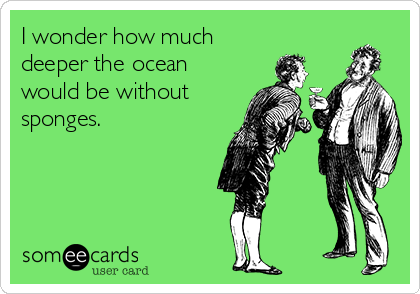 I wonder how much deeper the ocean would be without sponges.