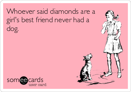 Whoever said diamonds are a girl's best friend never had a dog.