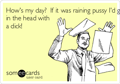 How's my day?  If it was raining pussy I'd get hit