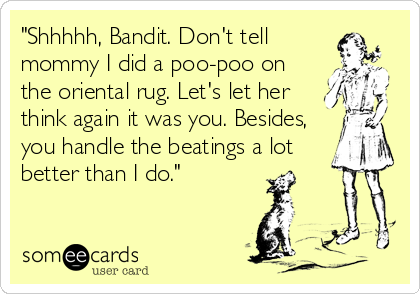 """""""Shhhhh, Bandit. Don't tell mommy I did a poo-poo on the oriental rug. Let's let her think again it was you. Besides, you handle the beatings a lot better than I do."""""""
