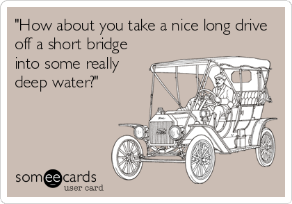 """How about you take a nice long drive off a short bridge into some really deep water?"""