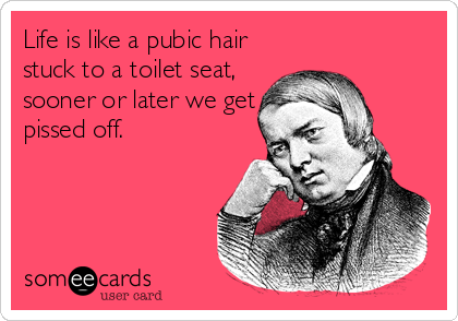 Life is like a pubic hair  stuck to a toilet seat, sooner or later we get pissed off.