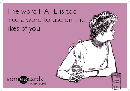 The word HATE is too nice a word to use on the likes of you!