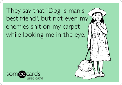 "They say that ""Dog is man's best friend"", but not even my enemies shit on my carpet while looking me in the eye."